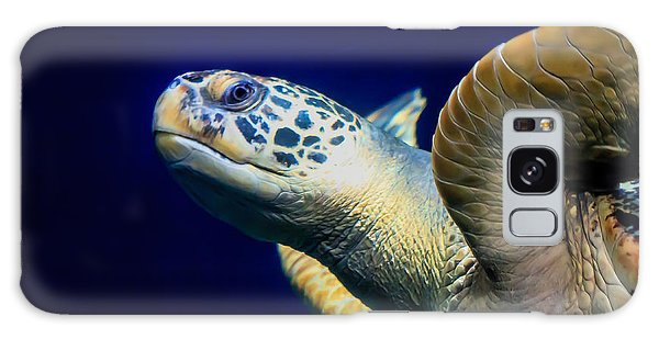 Sea Turtle Galaxy Case