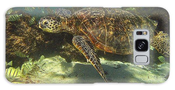 Sea Turtle Swimming Galaxy Case