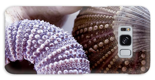 Sea Urchins  Galaxy Case by Colleen Kammerer