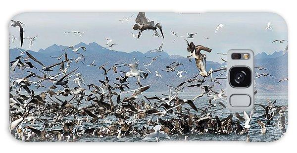 Boobies Galaxy Case - Seabirds Feeding by Christopher Swann
