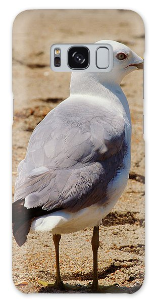 Seagull 3 Series 2 Galaxy Case by Kelly Nowak