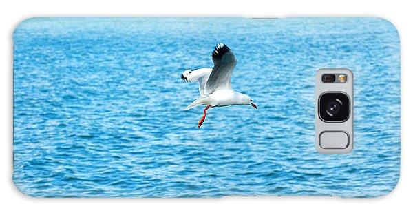 Seagull At St Kilda Galaxy Case by Yew Kwang