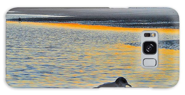 Seagull At Sunset Galaxy Case by Cindy Croal