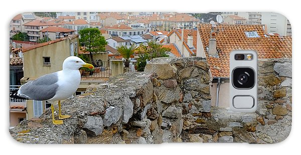 Seagull In Cannes Old City Galaxy Case