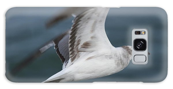 Conyers Galaxy Case - Seagull In Flight 12 by Cathy Lindsey
