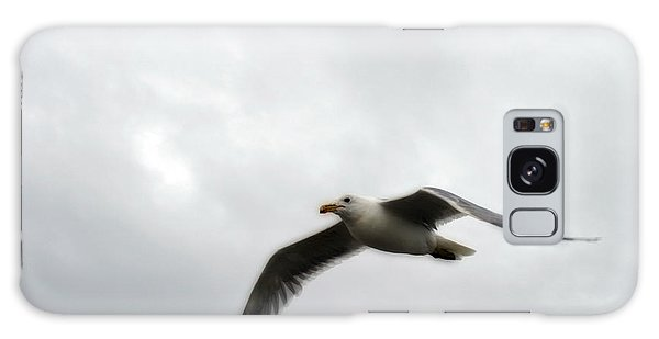 Seagull In Flight Galaxy Case