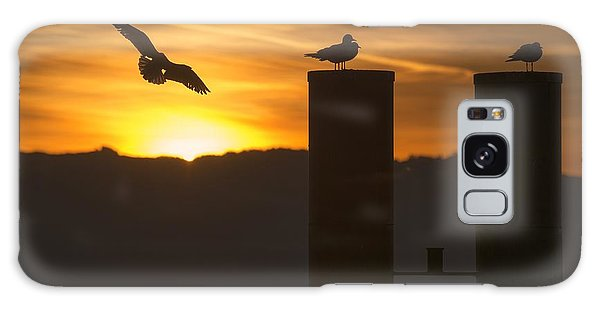Seagull In The Sunset Galaxy Case by Chevy Fleet