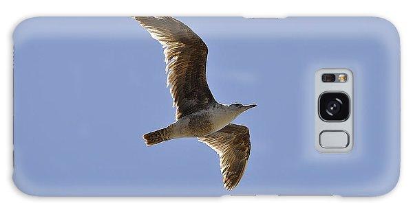 Seagull N Light  Galaxy Case