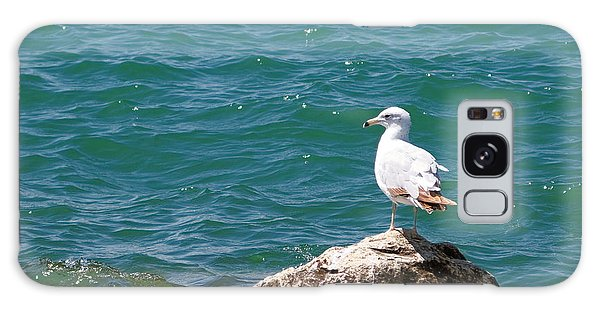 Seagull On Rock Galaxy Case