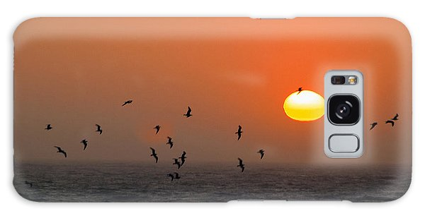 Seagull On Sunset Galaxy Case