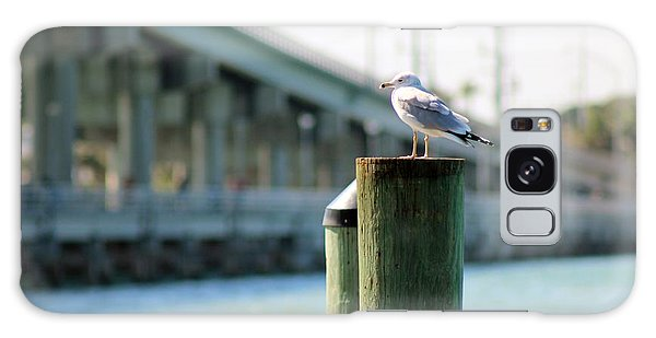 Seagull On The Dock Galaxy Case