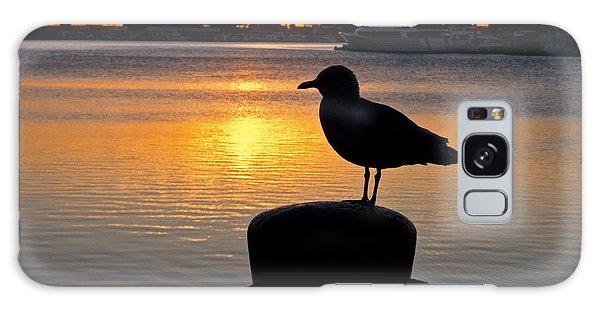 Seagull Silhouette Sunrise Galaxy Case
