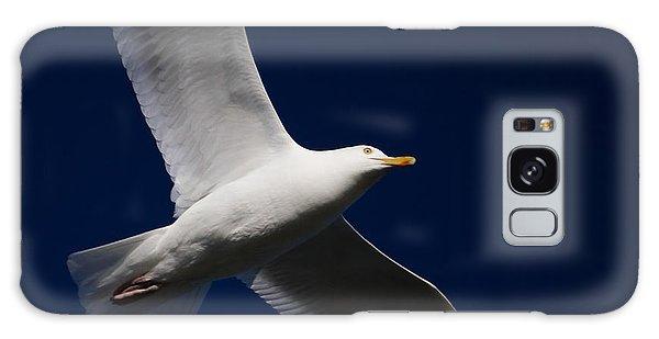 Seagull Underglow Galaxy Case