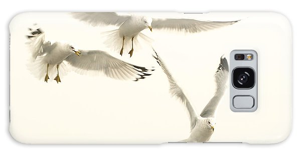Seagulls Flight Galaxy Case