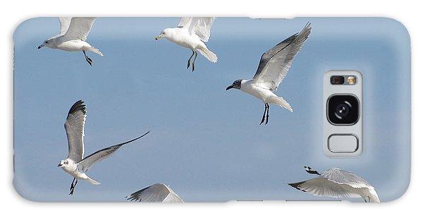 Seagulls See A Cracker Galaxy Case by Ellen Meakin