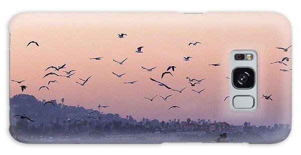 Seagulls Sunrise Galaxy Case