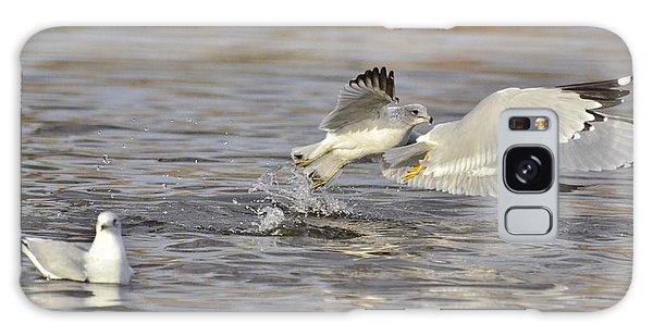 Seagulls Take Off Galaxy Case