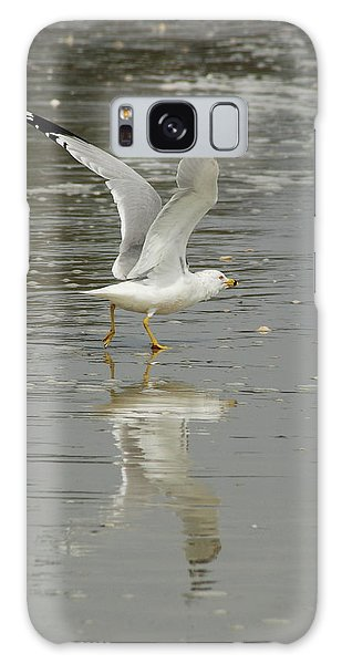Seagulls Takeoff Galaxy Case by Kathy Gibbons