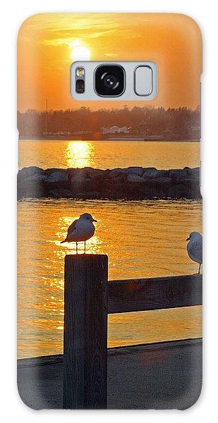 Seaguls At Sunset Galaxy Case