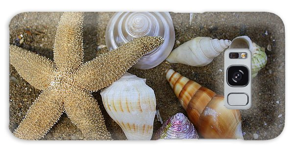 Seashells And Star Fish Galaxy Case
