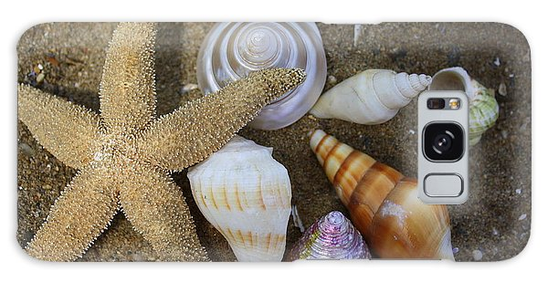 Seashells And Star Fish Galaxy Case by Dora Sofia Caputo Photographic Art and Design