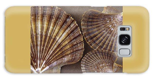 Seashells Spectacular No 7 Galaxy Case