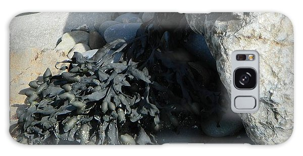 Seaweed And Rocks  Galaxy Case by Chalet Roome-Rigdon