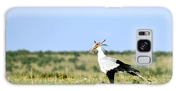 Secretary Bird Gathering  Galaxy Case