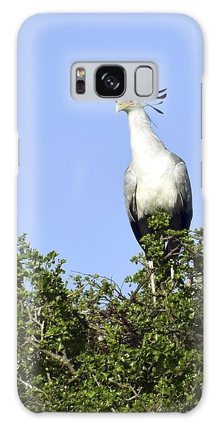 Secretary Bird Portrait Galaxy Case