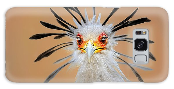 Outdoors Galaxy Case - Secretary Bird Portrait Close-up Head Shot by Johan Swanepoel