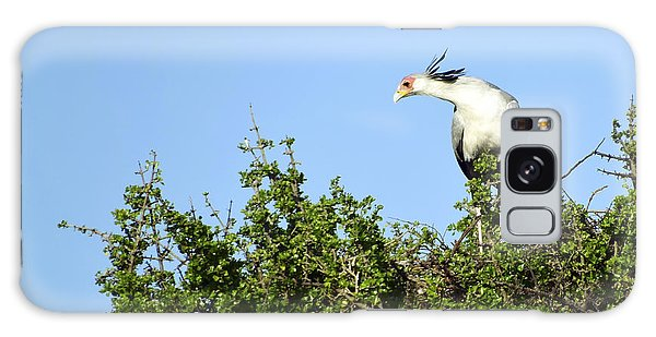 Secretary Bird Stretch Galaxy Case