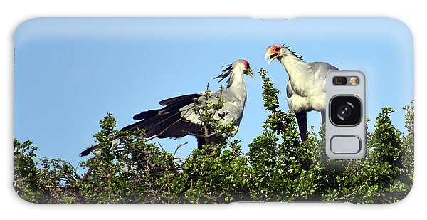 Secretary Birds Discuss Their Nest Building Galaxy Case