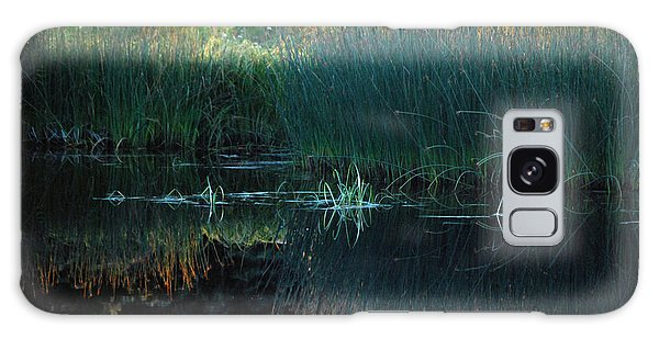 Sedges At Sunset Galaxy Case