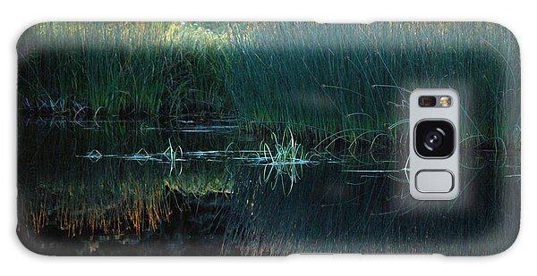 Sedges At Sunset Galaxy Case by Cynthia Lagoudakis