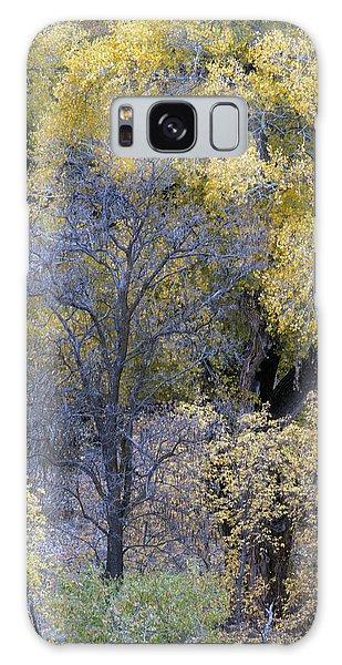 Sedona Fall Color Galaxy Case