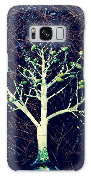 Seeded Tree's Galaxy Case