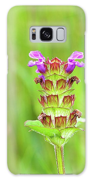 Cairngorms National Park Galaxy Case - Self-heal (prunella Vulgaris) by Duncan Shaw/science Photo Library
