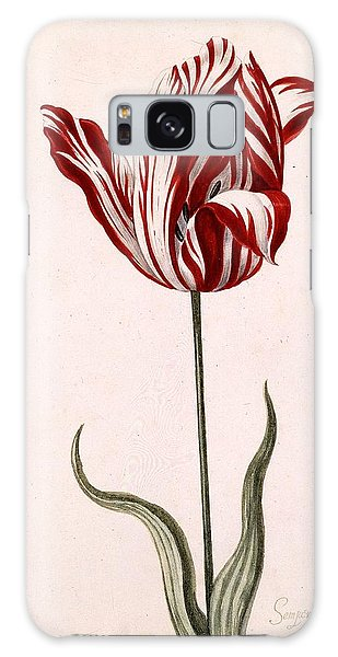 Tulips Galaxy Case - Semper Augustus by Celestial Images