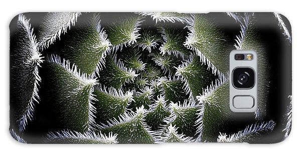 Cacti Galaxy Case - Sempervivum Rosette by Victor Mozqueda