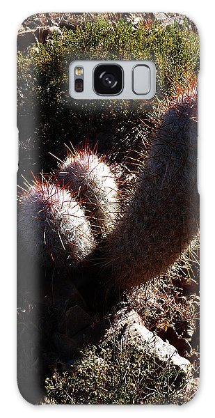 Senor Cacti Galaxy Case