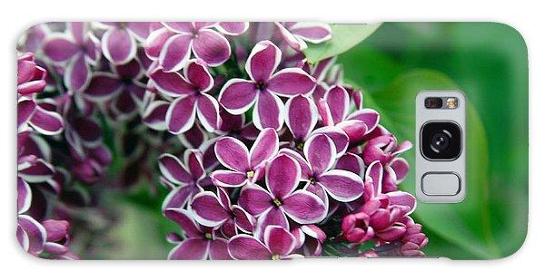 Sensation Lilac Galaxy Case by Richard Engelbrecht