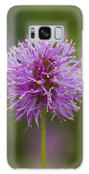 Sensitive Briar Flower Globe Galaxy Case