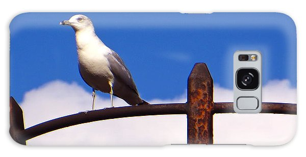 Sentinel Sea Gull Galaxy Case by Joy Hardee