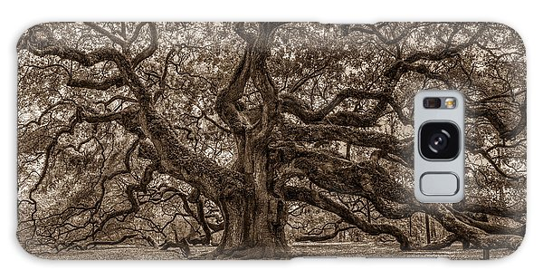 Sepia Angel Oak Galaxy Case
