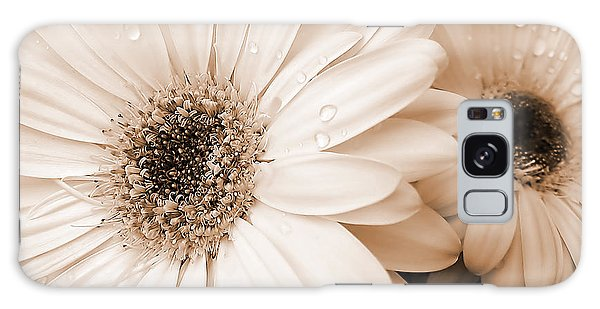 Sepia Gerber Daisy Flowers Galaxy Case