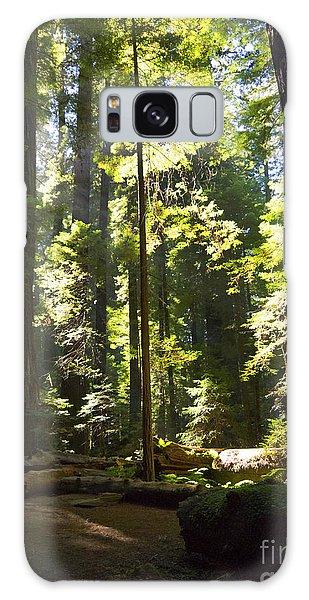 Sequoia Forest Galaxy Case