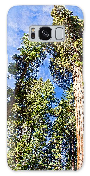 Sequoias Reaching To The Clouds In Mariposa Grove In Yosemite National Park-california Galaxy Case