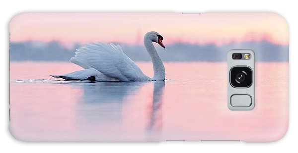 Serenity   Mute Swan At Sunset Galaxy Case