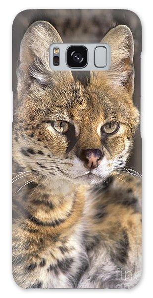 Serval Portrait Wildlife Rescue Galaxy Case