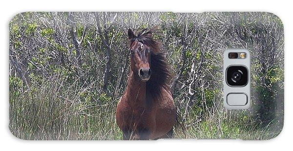 Shackleford Pony Galaxy Case